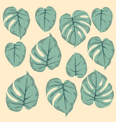 Simple seamless pattern of leaves monstera green vector