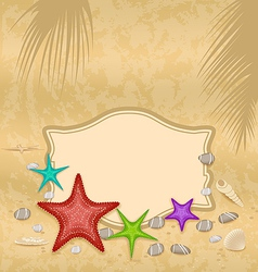 Vintage greeting card with shells and starfishes vector