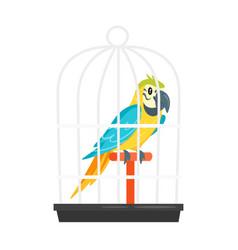 animal pet parrot in birdcage vector image