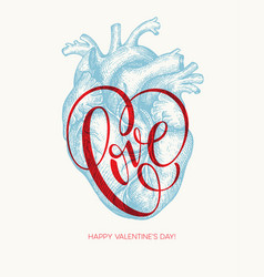 valentines day card with human heart and love vector image vector image