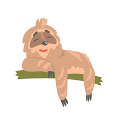 Cute cartoon sloth character lying on the tree vector