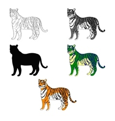depicting a tiger line vector image
