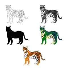 Depicting a tiger line vector