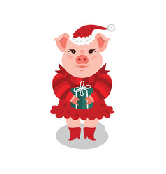 funny christmas pig a pink pig in a red dress and vector image