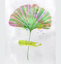 Ginkgo biloba leaf vector