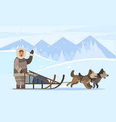 Inuit person traveling on sleds with husky dogs vector