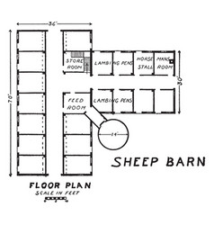Sheep barn sheep vary by climate vintage engraving vector