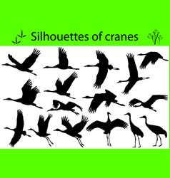 silhouettes cranes vector image