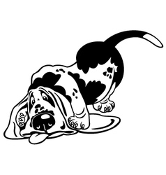 cartoon basset hound black white vector image vector image