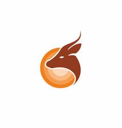brown deer head with horn vector image