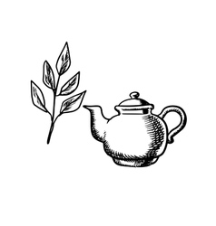 Ceramic teapot with tea leaves vector