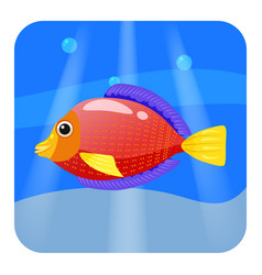 cute tropical fish red color in sea ocean vector image