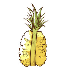 half pineapple icon tasty ananas dessert piece vector image