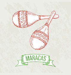 maracas hand-drawing vector image