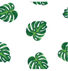 Pattern green leaves of tropical plant and tree on vector