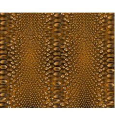 snake brown reptile skin texture background vector image