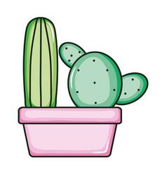 Cactus plants exotic in ceramic pot vector