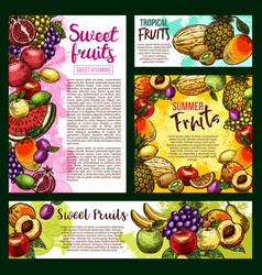garden and tropical ripe fruits banner vector image