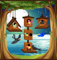 Many birds at birdhouse in the garden vector