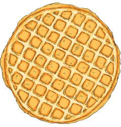 traditional belgian waffle vector image