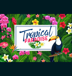 Tropical page design or poster vector