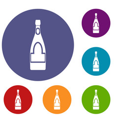 Champagne bottle icons set vector