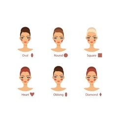 Blush for every woman face shape vector image