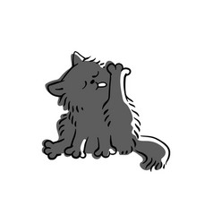 cute funny domestic black or gray cat licks its vector image
