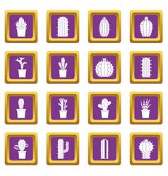 Different cactuses icons set purple vector