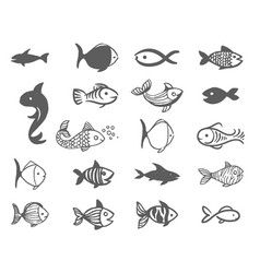 hand drawn sketch of fish on vector image