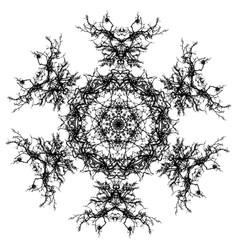 leafless branch mandala vector image