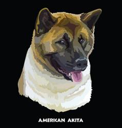 American akita colorful portrait vector