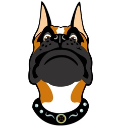 cartoon boxer head vector image