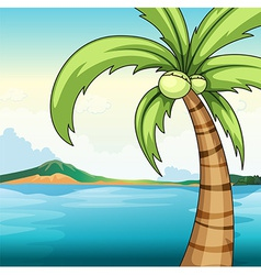 Coconut tree and ocean vector