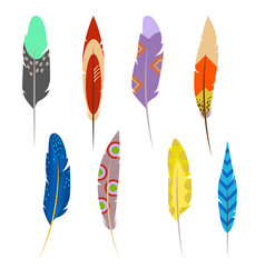 Feathers of exotic birds set isolated on white vector