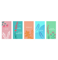 floral background templates set abstract vector image