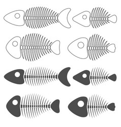 set with fish skeletons vector image