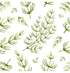 watercolor seamless pattern with horsetail vector image