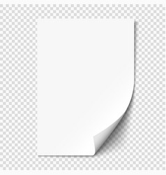 white page curl on empty sheet paper with shadow vector image