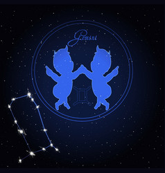 gemini astrology constellation of the zodiac vector image