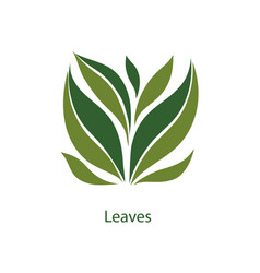 green leaves of trees and plants elements for eco vector image vector image