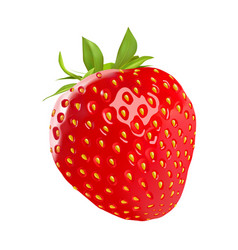red strawberry isolated on white background vector image vector image