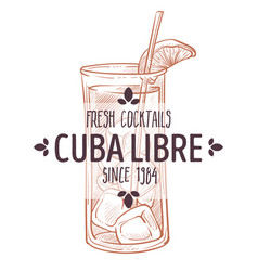 cuba libre fresh cocktail with mandarin slice vector image