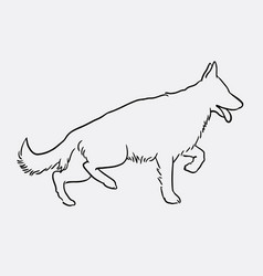 german shepherd pet dog doodle style vector image