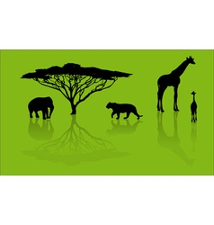 zoo silhouettes vector image