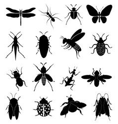 Insects icons set vector image vector image