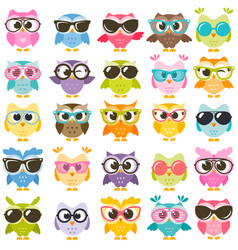 set of colorful owls with glasses isolated on vector image vector image