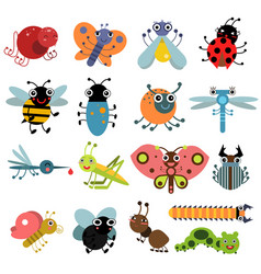 insects and bugs vector image