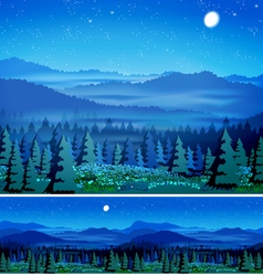 beautiful forest at night vector image vector image