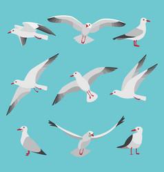set of atlantic seagulls in cartoon vector image vector image